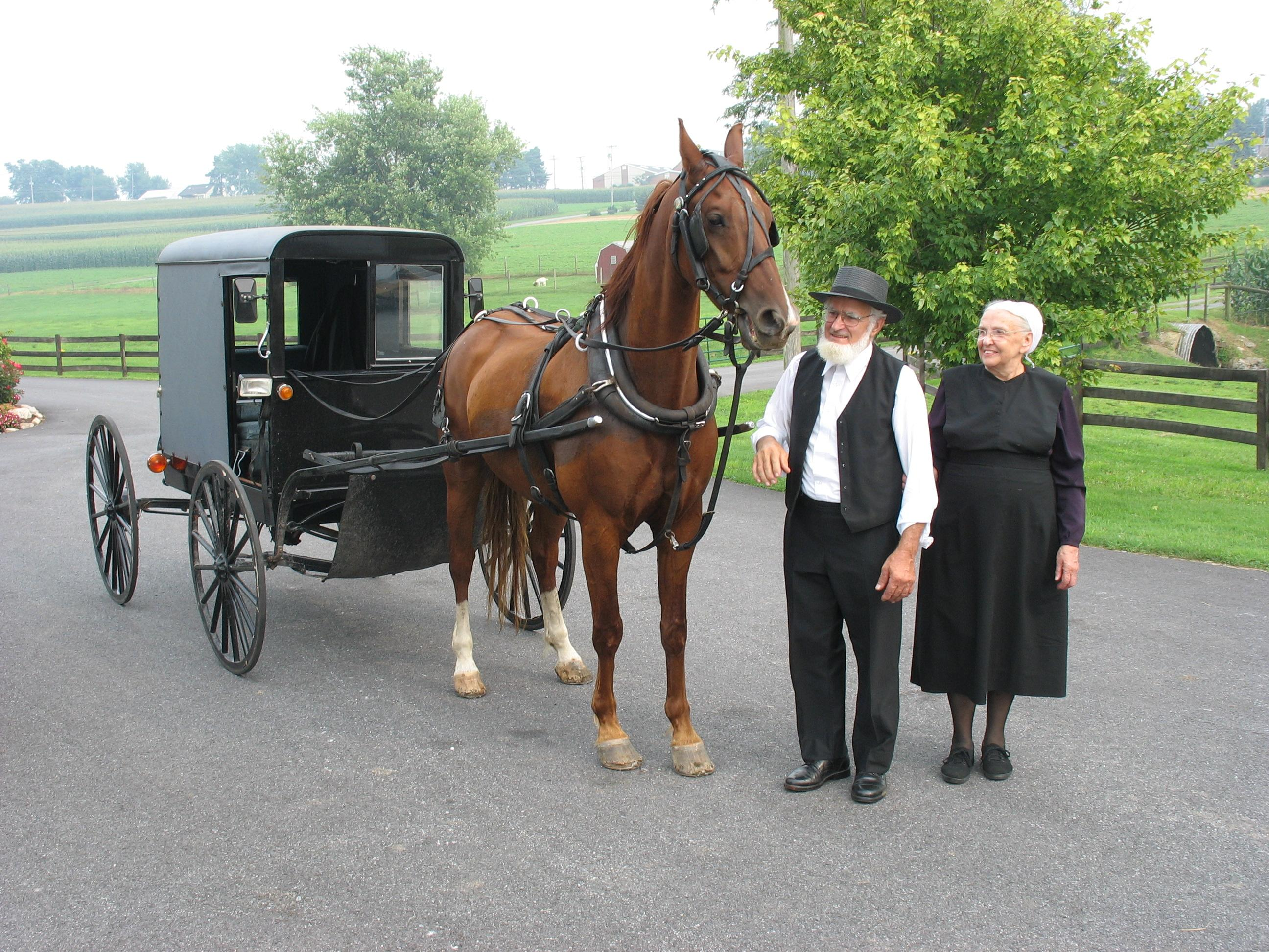 An Amish Market : Four Novellas by Kathleen Fuller, Kelly Irvin, Amy Clipston an